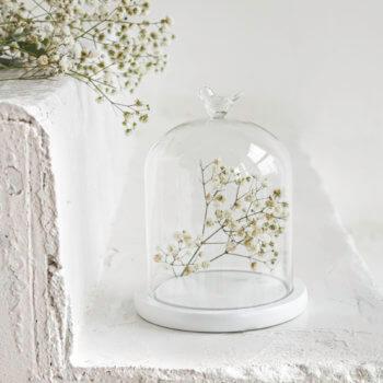 Фото 3 - Стеклянный купол с птичкой на подставке.