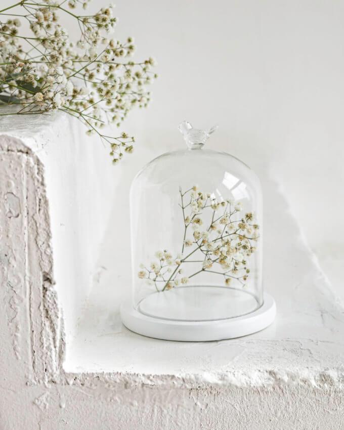 Фото 1 - Стеклянный купол с птичкой на подставке.
